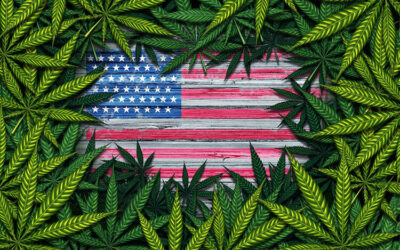 Cannabis in the United States since 2010